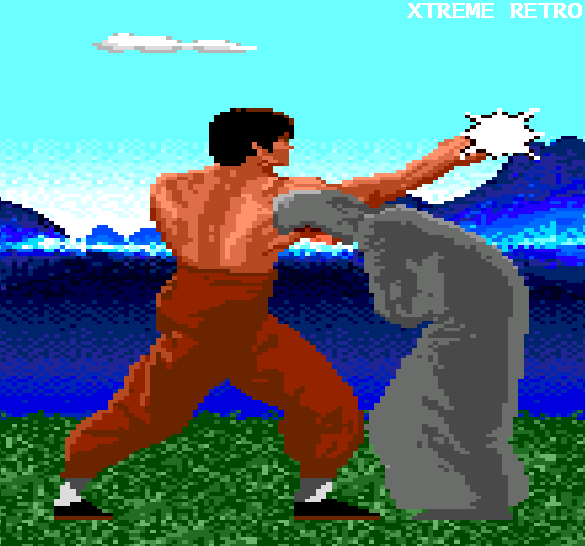 Kung Fu PC Engine