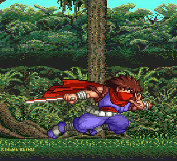 Strider Hiryu Pixel Art Jungle Xtreme Retro