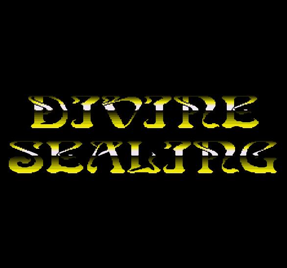 Divine Sealing Sega Mega Drive Shooter Xtreme Retro 6