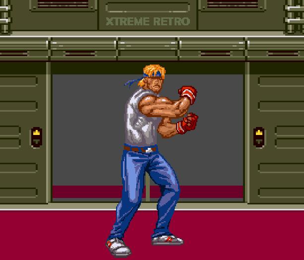 Streets of Rage Bare Knuckle 2 Sega Genesis Mega Drive Master System Game Gear Beat em up Pixel Art Xtreme Retro X