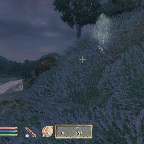 The Elder Scrolls Oblivion PC Xbox 360 PS3 Xtreme Retro 14