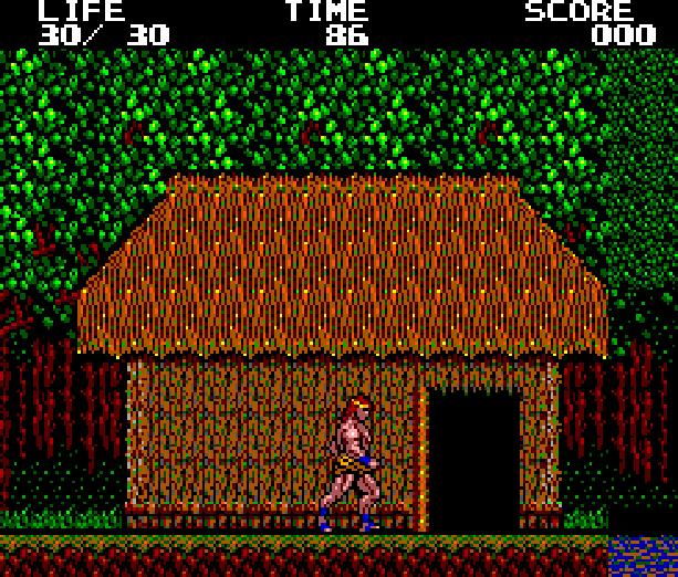 Danan the Jungle Fighter Sega Master System Xtreme Retro 1